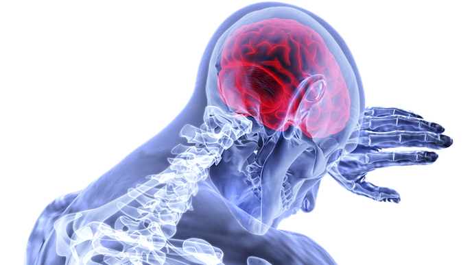 Protein in Blood May Predict Prognosis, Recovery from Stroke