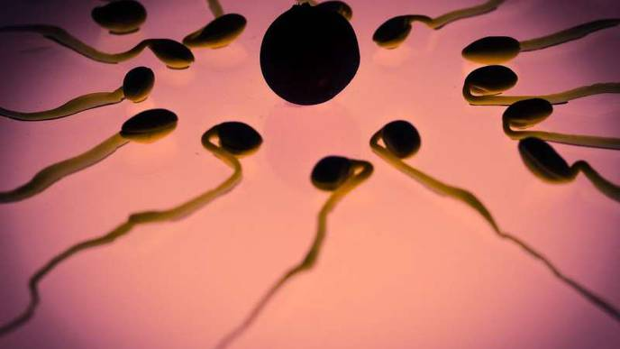 Fear & Anxiety Can Have Lasting Impact on Man's Sperm & Future Offspring