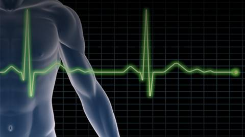 The 7 Key Health Metrics for Cardiovascular Health