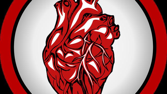 Stem Cell Study Illuminates the Cause of a Devastating Inherited Heart Disorder